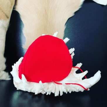 Cubremascarilla para FFP2 roja con cristales de Swarovski