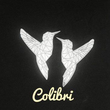 Pendientes colibrí